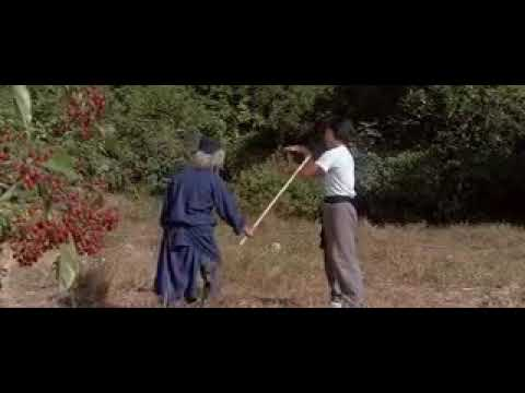 Learn Snake Style Kung Fu With Jackie Chan..