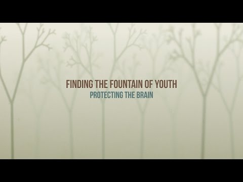 385  - Protecting the Brain / Fountain of Youth - Diane Burnett