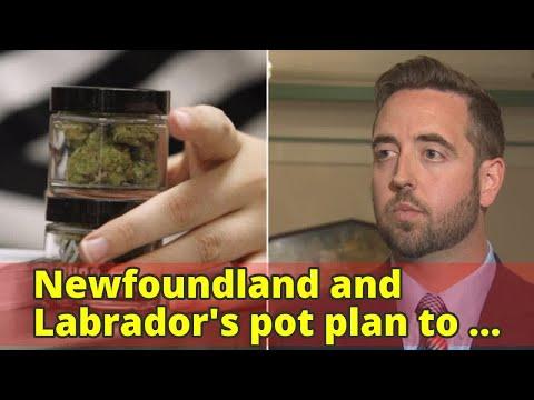 Newfoundland and Labrador's pot plan to be revealed today
