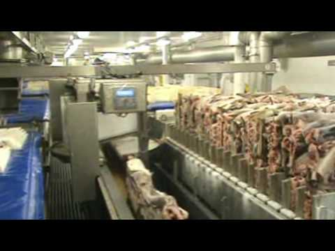 Norwegian H G Factory Trawler And 248 Ybuen Using Atlantic