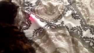 Лазерная кошка М.2
