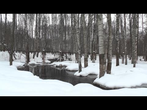 В середине февраля зажурчали ручьи с неприятным запахом в городском парке г. Волгореченска
