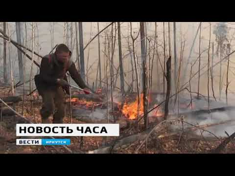 Два пожара в лесах Тайшетского и Нижнеудинского районов действуют в Иркутской области
