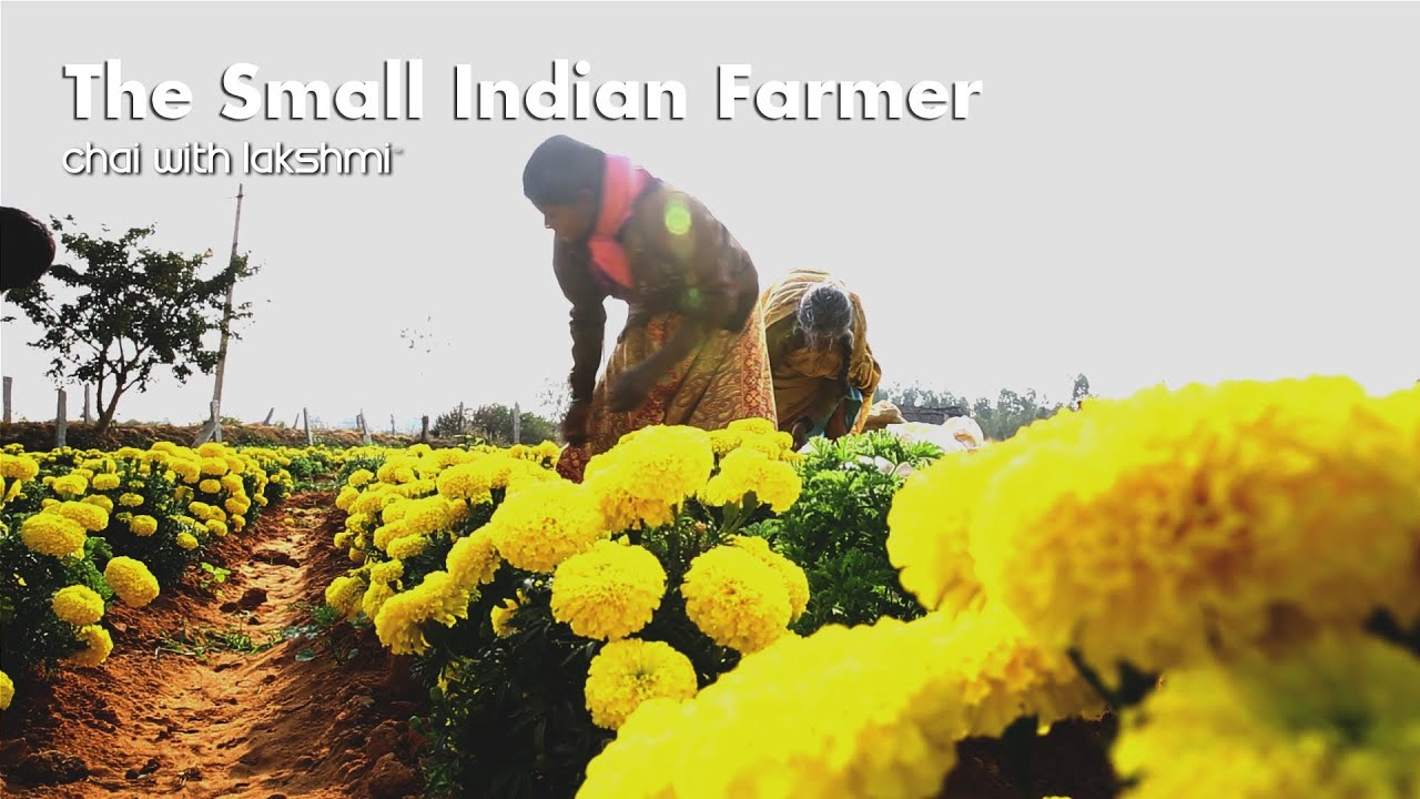 life of indian farmer India village life- very hard life farmer women's in india village-part-2 - duration: 1:51 halla bol all types gyan 277,148 views.