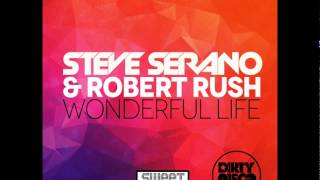 Steve Serano & Robert Rush - Wonderful Life (Dirtydisco remix)