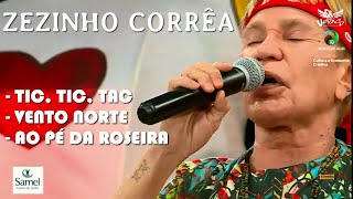 ZEZINHO CORRÊA - GRANDE RODA TOADA - TIC TIC TAC