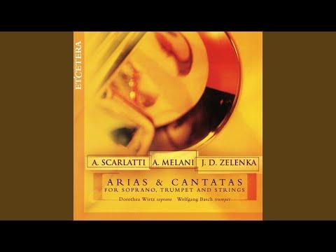 Laudate Pueri, Cantata For Soprano Trumpet, Strings & Continuo