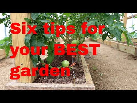 Six Laws of plant growth - have your best garden Mp3