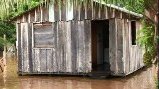 O drama dos ribeirinhos atingidos pela enchente do Rio Madeira