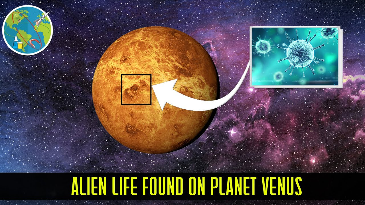 Alien Life Found on Venus its Climate ...