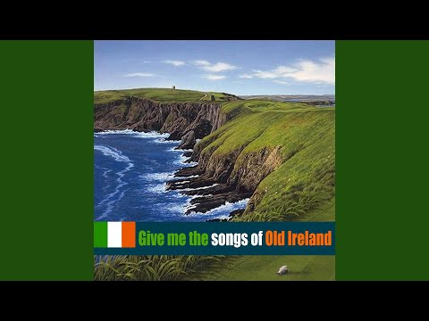 Did Your Mother Come from Ireland