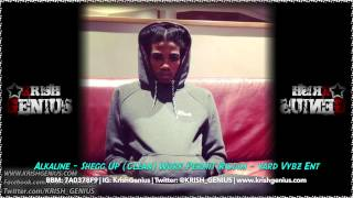 Alkaline - Shegg Up (Clean) Work Permit Riddim - April 2014