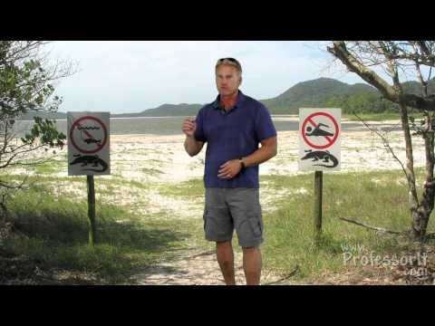 Travel Guide On Video 05: Best Beaches of the Indian Ocean