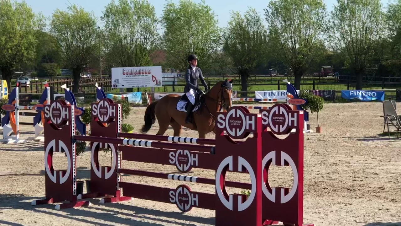 Nyles vd Mottelhoeve - 120 Gold League St Katelijne Waver