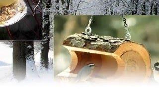 Покормите птиц зимой... Кормушки, идеи(Это милое слово -слайд-шоу... • Слайд-шоу – это удобное средство хранения и просмотра своих фотографий...., 2015-12-06T16:51:43.000Z)
