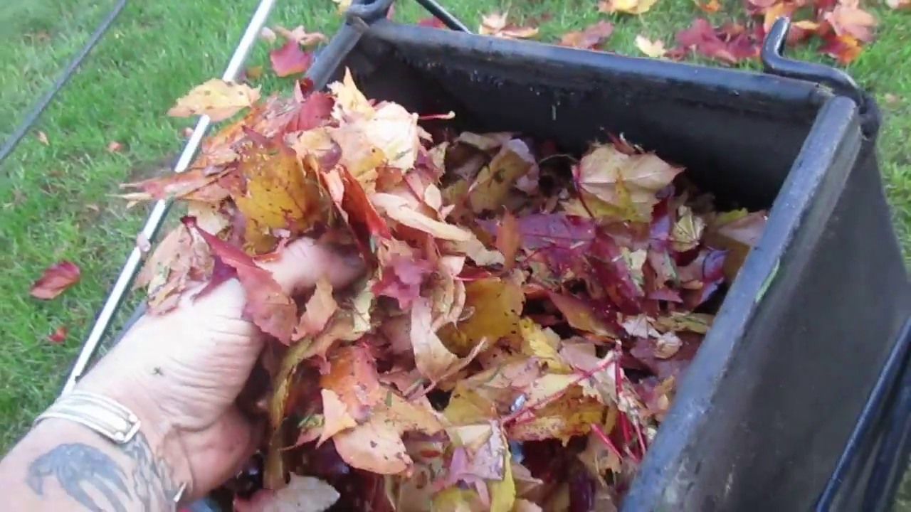how to make organic compost video
