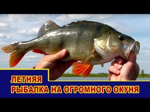 летняя рыбалка на спиннинг - 2017-09-03 16:37:57