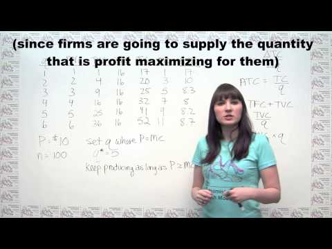 Microeconomics Practice Problem Competitive Markets in the Short Run and the Long Run