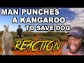 Man punches a kangaroo in the face to rescue his dog : REACTION!!