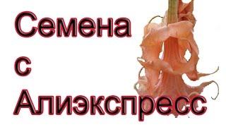 Распаковка семян цветов с Алиэкспресс(, 2016-05-01T03:00:01.000Z)