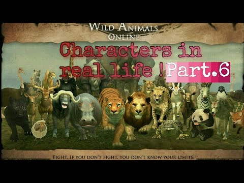 Wild Animals Online || Characters in real life ! Part.6