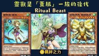 【遊戲王 Duel Links 】401 靈獸的騎襲Ritual Beast Ambush 靈獸使維恩Ritual Beast Tamer Wen 聖靈獸騎火獅Ritual Beast Ulti