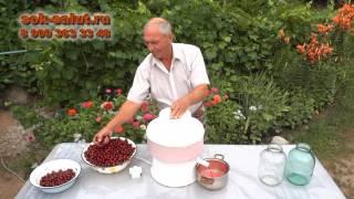 видео Вишневый сок