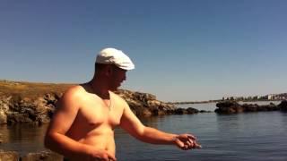 Рыбалка 26 мая Крым г. Щёлкино  Азовское море  IMG1734(, 2013-05-27T13:58:37.000Z)