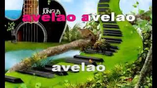 AVELAO    RIJA  RASOLONDRAIBE karaoke