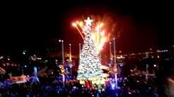 Jacksonville Landing Tree lighting 2011