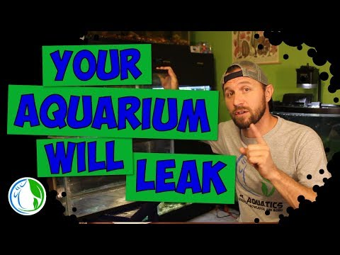 WHY YOUR AQUARIUM WILL LEAK - 3 REASONS