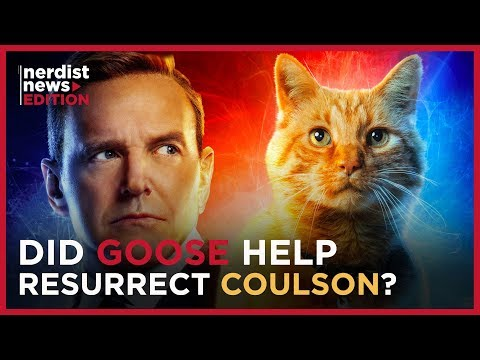 Is Goose the Cat the Key to Resurrecting Agent Coulson? (Nerdist News Edition)