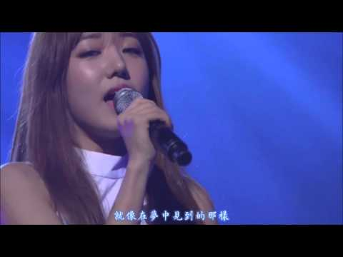 【HD繁體中字】 A Pink - A Wonderful Love + Promise @ Apink 2nd concert  Pink Island
