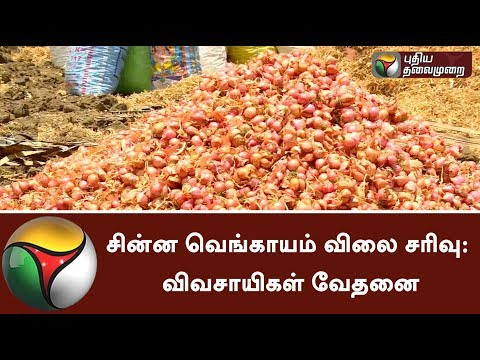 Fall in small onion prices affects Farmers in Namakkal | #Farmers #OnionPrice