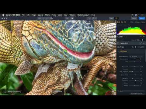 Using Aurora HDR As A Plugin – Photoshop