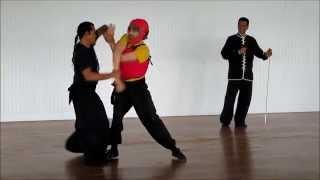 Northern Praying Mantis Kung Fu Self-Defense, San Sao 七星螳螂拳 散手