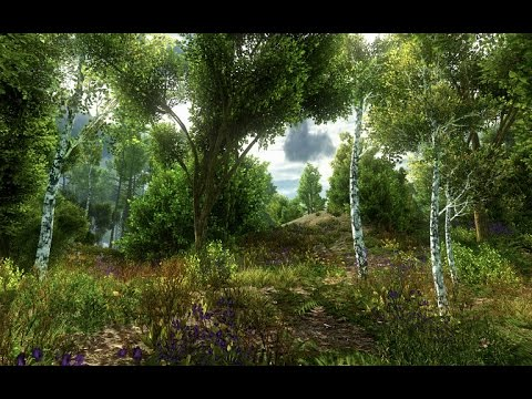 Unity Asset Store Pack - Realistic Nature Environment models (Download link in description)