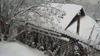 Пчеловодство. «Холодный» зимовник.