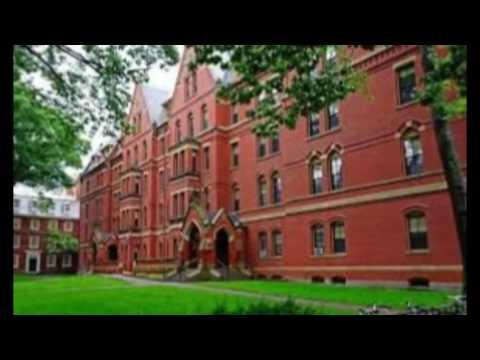 university usa ranking