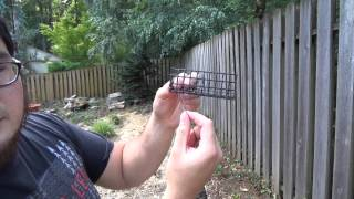 How To Build A Crayfish Trap For Under $5 - Part 4 - Building A Bait Box