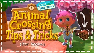 Animal Crossing MOST HELPFUL Tips & Tricks (For Noobs)