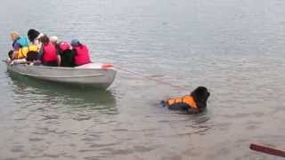 "Riggs pulls a ""full boat"" at Water Rescue Camp MVI 4462"