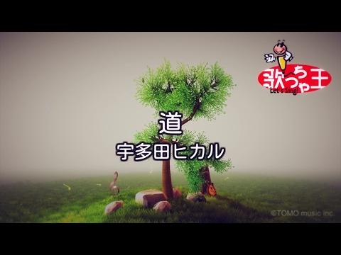 【カラオケ】道/宇多田 ヒカル