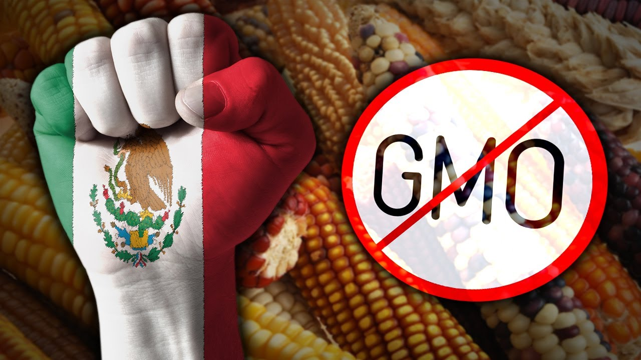 Mexico Says No to GMOs, Covid Passports and More - #NewWorldNextWeek (James Corbett)