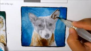 Part 2: How to Color Grayscale with Watercolors - the Basenji