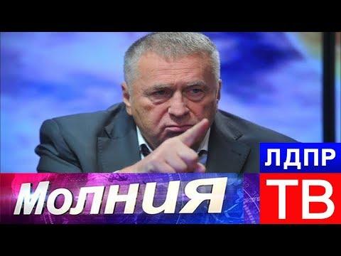 """Жириновский: подставные фирмы попадут в """"черный"""" список"""