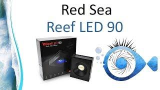 ReefLED 90W WIFI Reef Spec LED - Red Sea ReefBeat - Mr Recif Captif #