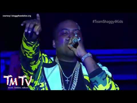 TMTV  Sean Kingston Beautiful Girls : Shaggy & Friends 2016