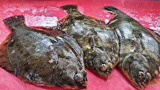 살이통통 올라온 도다리 회뜨기 flounder sash…