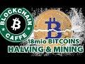 Halving and Mining  Blockchain Caffe